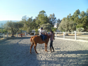 Children's riding lessons in Andalucia
