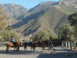 Horse riding activities in Andalucia