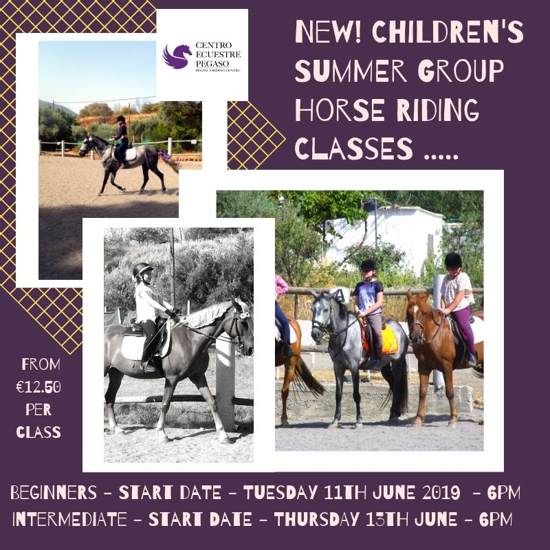 New Children's Summer Riding Group