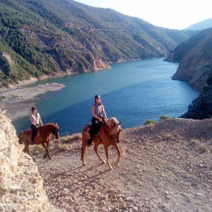 horse and lake